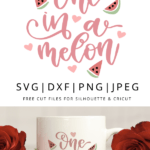 One in a melon hand lettered vector file