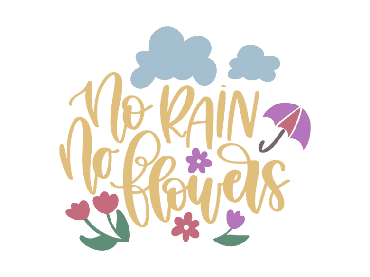 No rain no flowers vector file