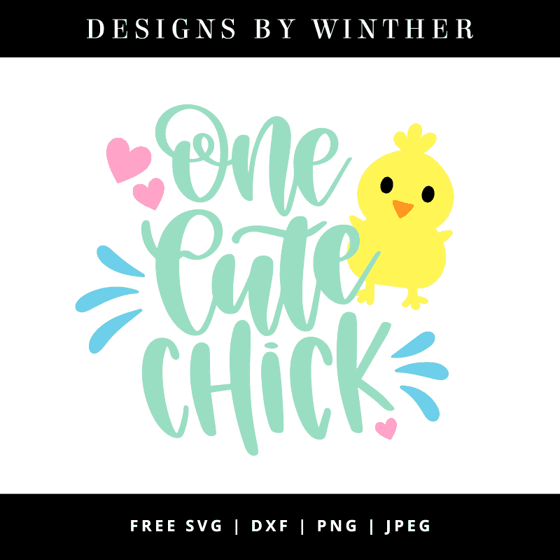 One cute chick vector art
